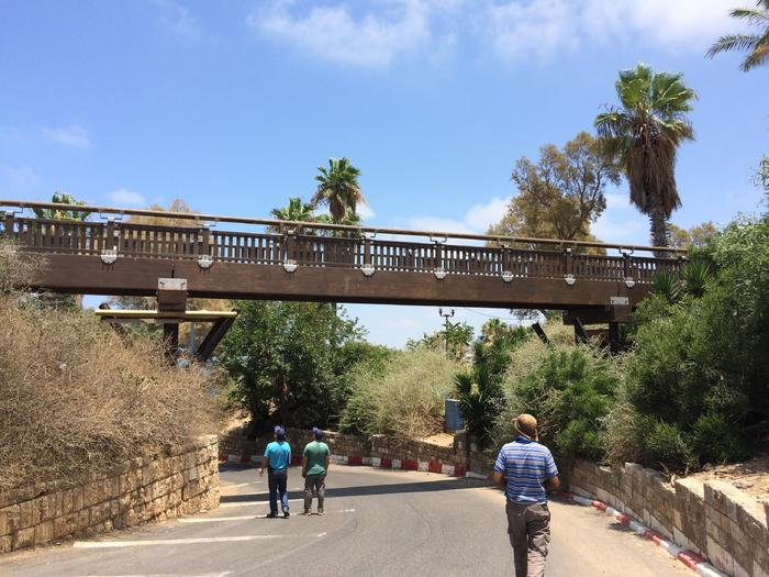 The Wishing Bridge of Jaffa